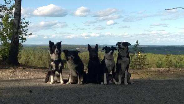 Meidän reissuporukka, josta puuttuu Sirken pojat. Vasemmalta Nyyti, Fani, Ylva, Puuma ja Roima. Kuva: Angelica Leiman