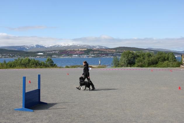 Norja2015 032